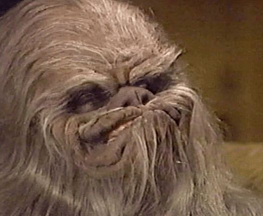 Beware the roar of Itchy! The Star Wars Holiday Special (1978)