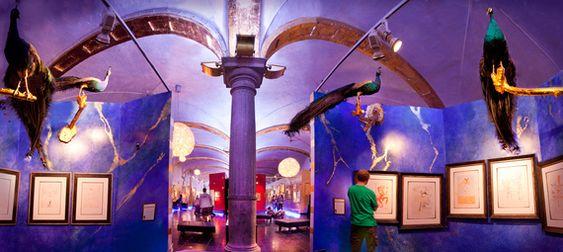 Image result for salvador dali museum bruges