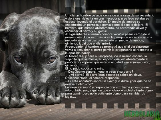#Cuento #NoTeQuejes