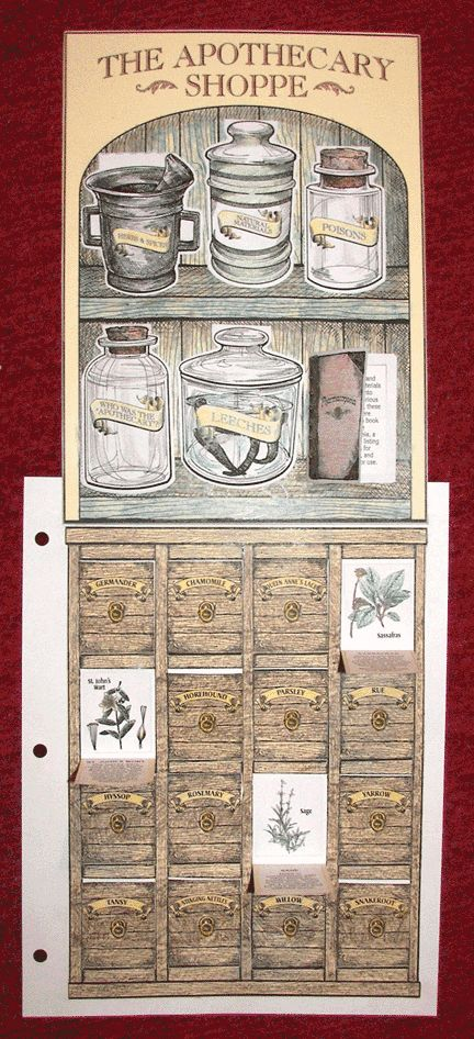 "HTTA - Time Travelers - Colonial Life ""The Apothecary Shoppe"" ...uses for herbs, tinctures, and yes... leeches."