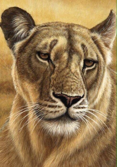 Pin De Luisa Sotelo En Tattoos Animales Depredadores Pinturas