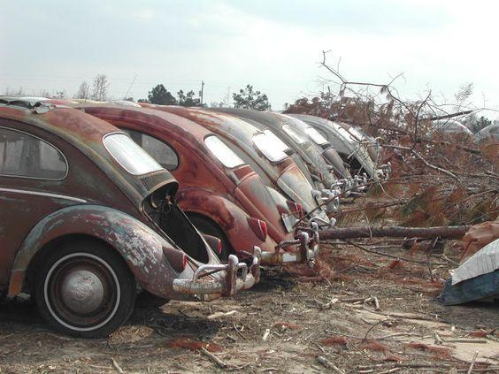 Rusty VW Beetle line up