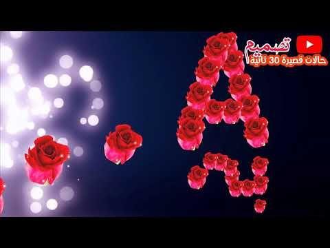 حالات واتساب عن الحب حرف A Youtube My Love Love You Pandora Screenshot