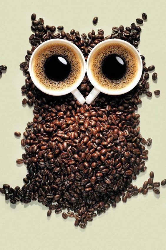 Le café du matin... C'est chouette