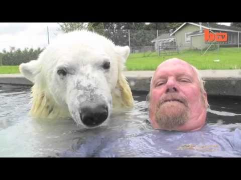 Man Swims with Polar Bear