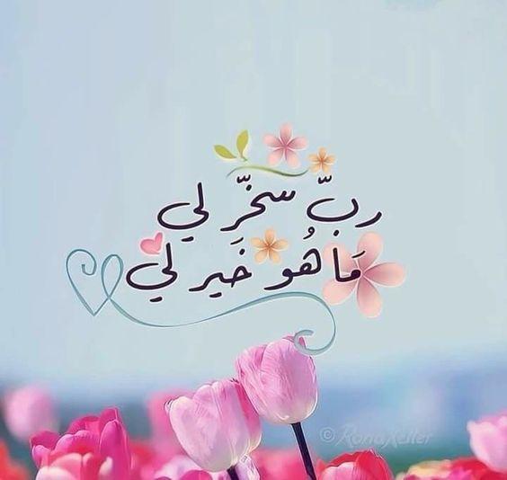 ورود جميلة مع كلام جميل In 2021 Arabic Quotes Islamic Pictures Quran Quotes