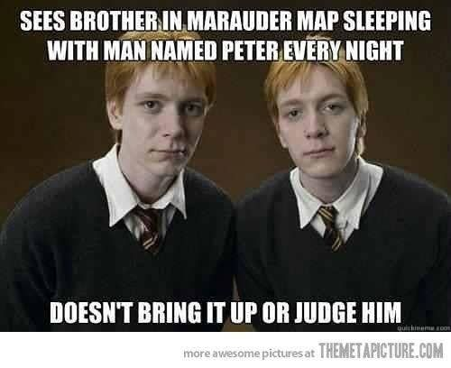 100 Harry Potter Memes That Will Always Make You Laugh Harry Potter Facts Harry Potter Funny Harry Potter Memes
