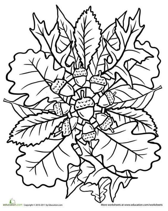 Oak tree coloring page mandala mandalas fall and colors for Fall mandala coloring pages