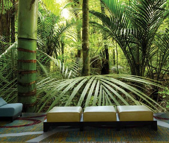 Rain forest wall mural, Pre pasted , Washable and dry strippable wall paper, wall covering  • Doesn't damage wall surface • Easy to install easy to remove • Pre pasted • Customized to fit any wall dimension.