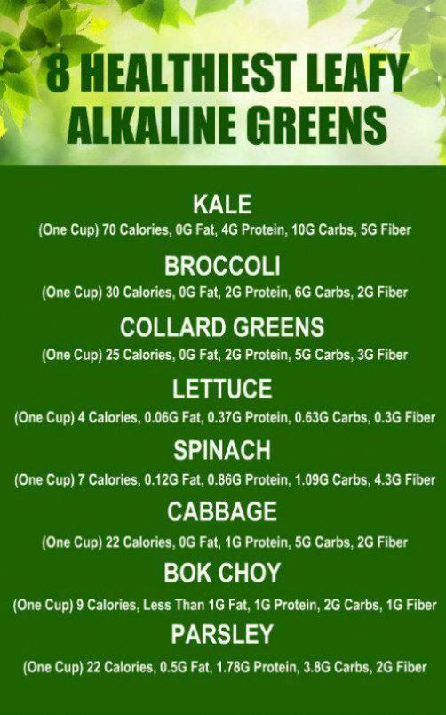 1 Year Baby Food Tips In Tamil Babyfoodtipskannada Gardeningtipswithgreenday Health How To Increase Energy Alkaline Diet