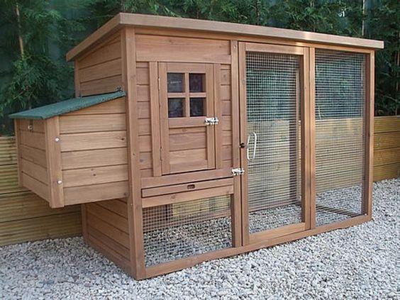 Diy small chicken coop plans 18 photos of the diy for Small backyard chicken coop plans free