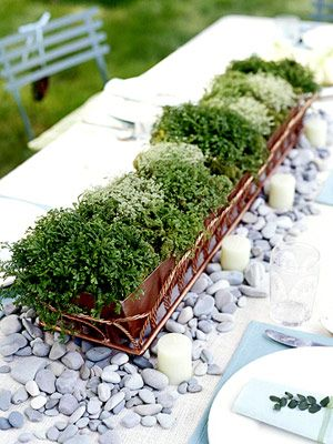 potted herb centerpieces: