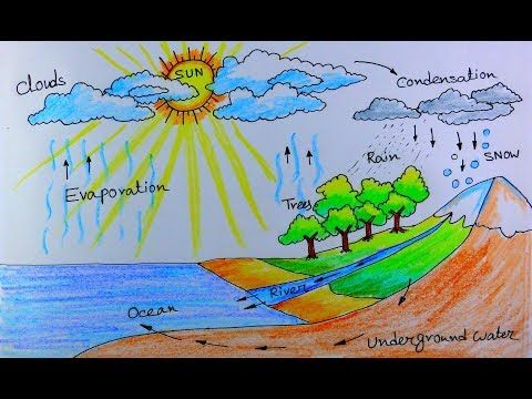 How To Draw Water Cycle Of A School Project Youtube Water