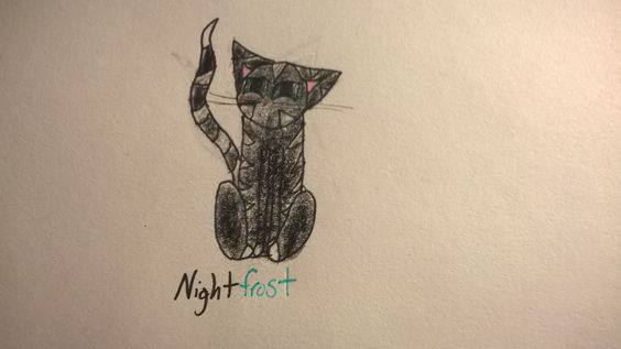 This is me as a warrior cat, deputy of Shadowclan. By Shadow Girl