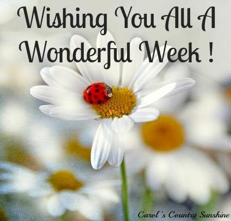 Wonderful week wishes quote via Carol's Country Sunshine on Facebook: