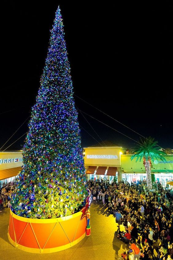 The world's largest Christmas tree lighting took place at Citadel Outlets in Commerce, California. The live-cut tree is 115-feet-tall and stands next to the world's largest Christmas bow.