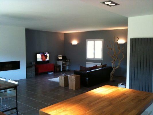 salon peinture gris galet dco intrieur bleu et gris mur peinture couleur grise - Salon Gris Galet