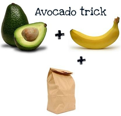 How to ripen an avocado - ExPress-O: Ripening Avocado, Ripened Avocados, Avocados Banana, Ripe Banana, How To Ripen Avocados Quickly, Ripe Avocado, Avocado Bananas