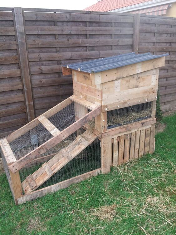 how to make a rabbit run out of pallets