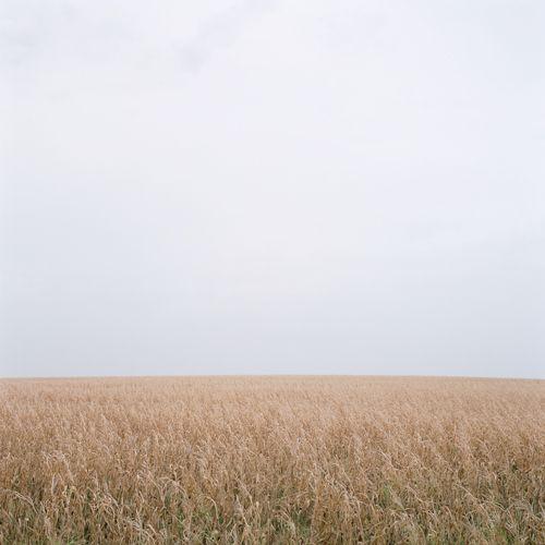 prairie: