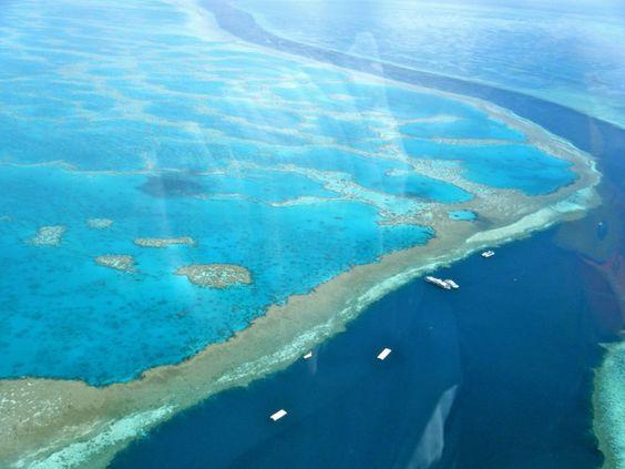 10 sítios que deve visitar antes que desapareçam   Grande Barreira de Coral. As alterações climáticas conduziram à erosão das estruturas da barreira de coral e à consequente perda de diversidade. Em 100 anos pode não existir. Wikimedia Commons