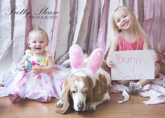 Easter picture ideas, Flagstaff, Arizona, Bassett Hound, Pretty Please Photography.