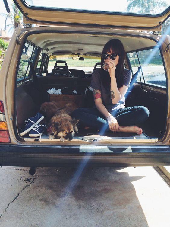 หมาอยู่บนรถ