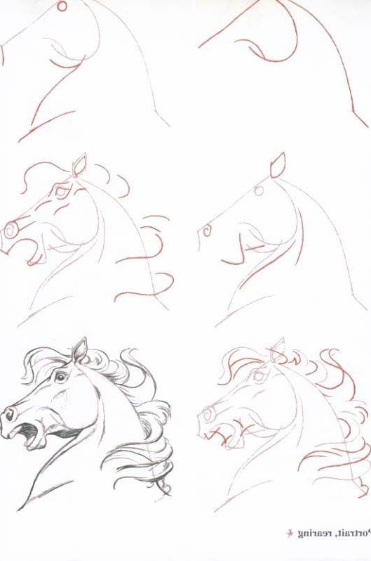 20 Easy Drawing Tutorials For Beginners Cool Things To Draw Step By Step Wallpaper Iphone