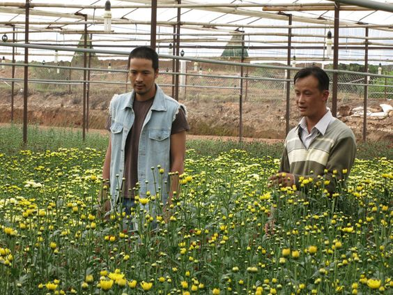 Trang Trai Hoa Hong VTV1
