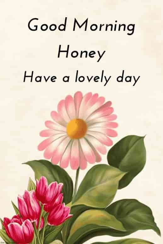 Good Morning Hd Image For Honey Latest Good Morning Good Morning Quotes Good Morning Love Messages