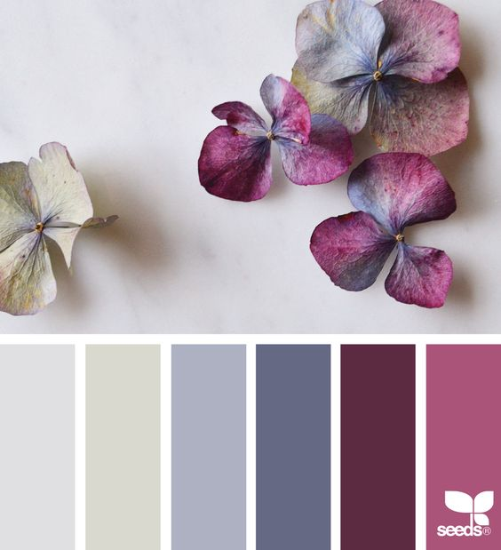 design seeds  flora hues  for all who ♥ color