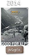 GUIDE - Pastori e guide alpine. Due mondi a confronto.  Pastori e guide alpine resistono in un mondo che cambia e per rimanere se stessi impone di cambiare punto di vista e il coraggio di seguire le proprie passioni... #Dolomiti #Dolomiten #Dolomites #Dolomitas #DoloMitici #DolomitiHeart #AKU