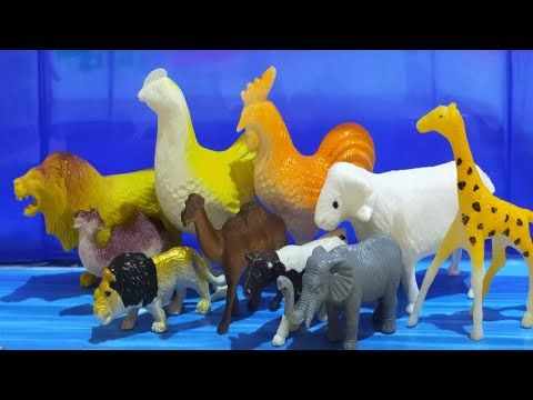 Animals For Kids Animal Farm Wild Animals Zoo Animals افلام كرتون اطفال افلام كرتون كرتون اطفال افلام كرتون اطفال حوا Dinosaur Stuffed Animal Toys Animals