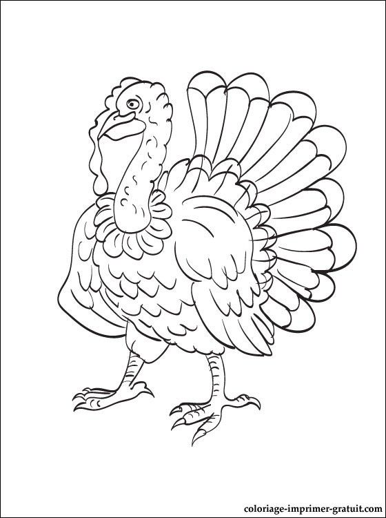 Elephant Coloring Pages For Kids Preschool And Kindergarten In 2020 Turkey Coloring Pages Coloring Pages Elephant Coloring Page
