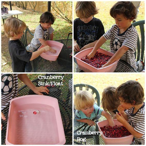 "Cranberry Thanksgiving - Cranberry sink/float, cranberry ""bog"""