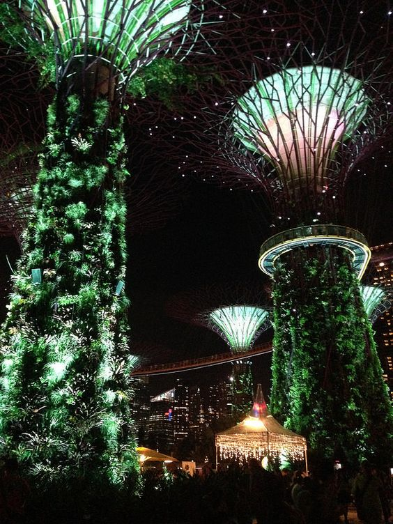 Gardens by the Bay, Christmas 2014