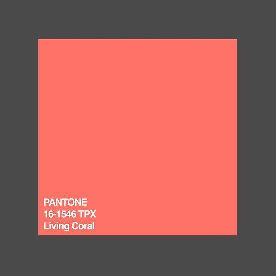 Pantone Color Of The Year 2019 Living Coral Pantone Color Pantone Color Of The Year