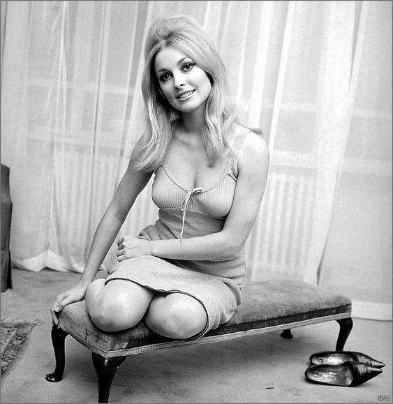 1967: Dana Sharon, Sharon Tate Style, 1960 Hair, Beautiful Hair, Beautiful Sharon, 1967 Sharon, Icon Sharontate