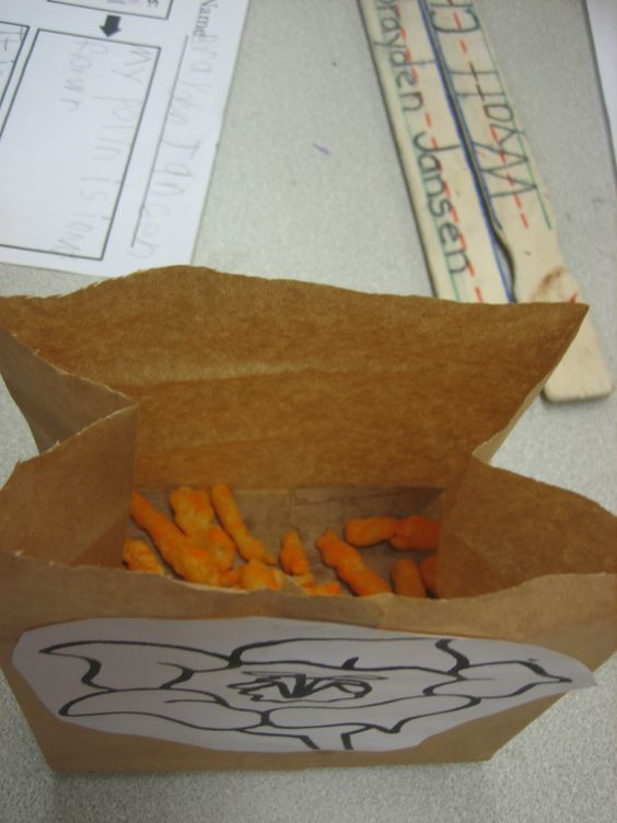 Teaching pollination with Cheetos - brilliant! - from Little Warriors - Great science project for zoology!: