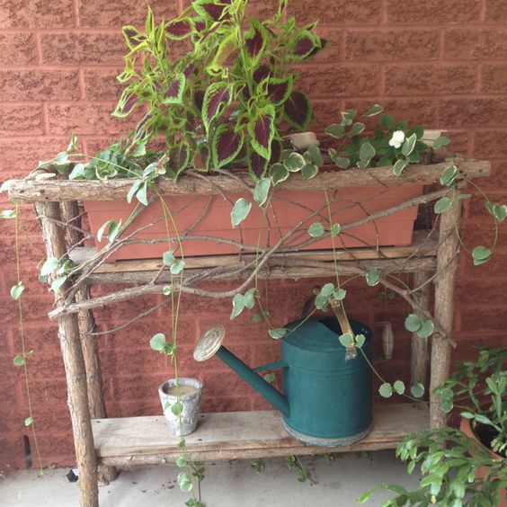 flower pot holder made from old trees & branches: Old Trees, Trees Branches, Flower Pots, Tree Branches, Pot Holders