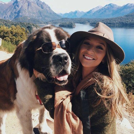หมาและเจ้าของ