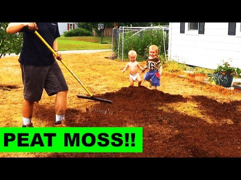 Top Dressing Your Grass Seed With Peat Moss Youtube Peat Moss Peat Grass Seed