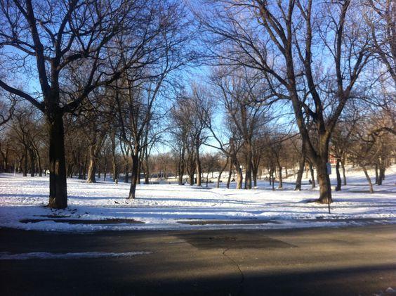 Parc Lafontaine under the snow- Montréal