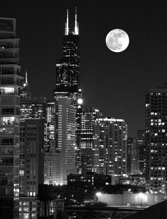 The Sears Tower Chicago! (Willis Tower) designed by Skidmore,Owings  & Merrill.