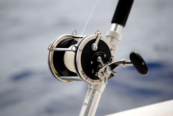 Deep Sea Fishing And Deep Sea Fishing On Pinterest
