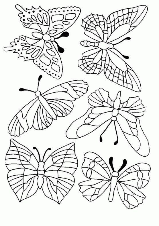 Schmetterling Malvorlagen Malvorlage Schmetterling Schmetterling Vorlage Malvorlagen