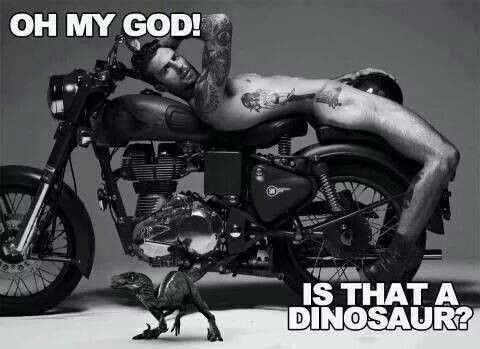OMG! Is that a dinosaur?