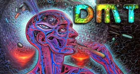 Is DMT a Gateway to Extra-Dimensional Alien Contact?