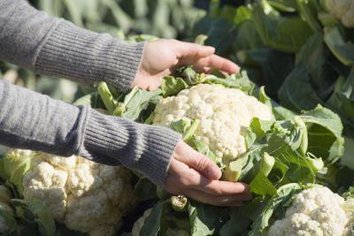 Cauliflower/Spinach Balls