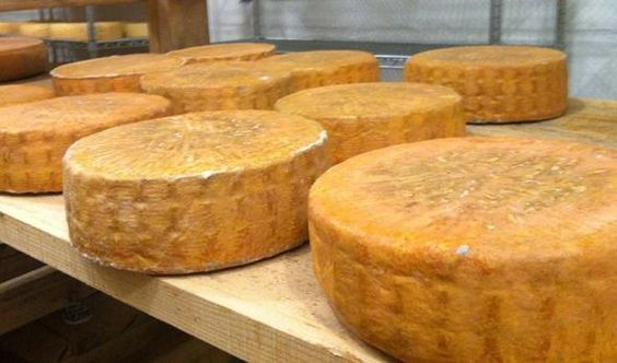 Herdsman Pless, Nobscot Artisan Cheese: Made from raw milk provided by the farm's cows, Herdsman Pless is an alpine style cheese that works well in sandwiches and on crackers.